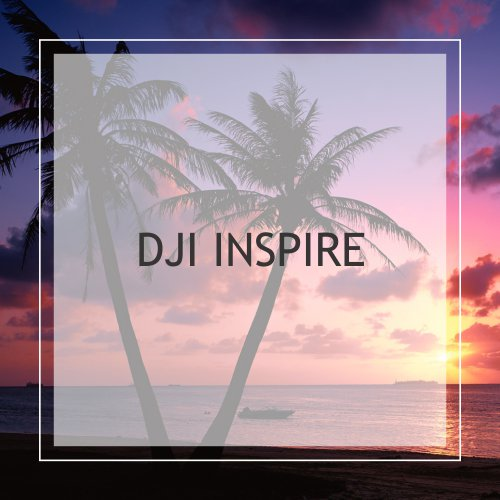 DJI Inspire
