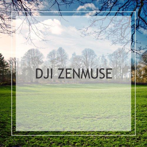 DJI Zenmuse